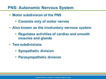 Copyright © 2009 Pearson Education, Inc., publishing as Benjamin Cummings PNS: Autonomic Nervous System  Motor subdivision of the PNS  Consists only.