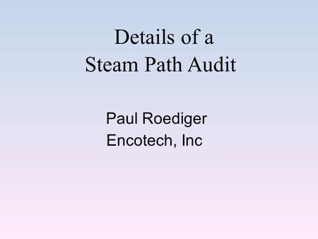 Details of a Steam Path Audit