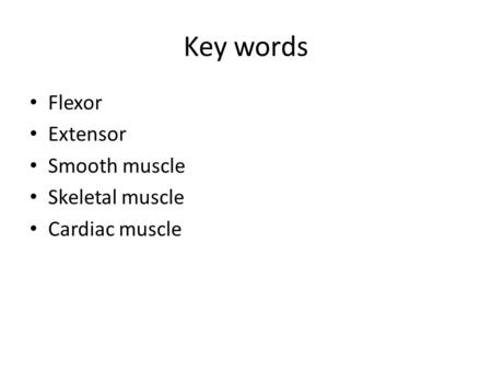 Key words Flexor Extensor Smooth muscle Skeletal muscle Cardiac muscle.