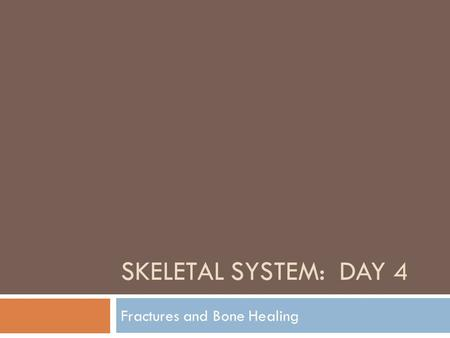 SKELETAL SYSTEM: DAY 4 Fractures and Bone Healing.