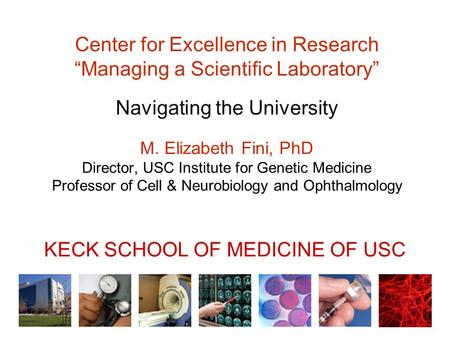 "Center for Excellence in Research ""Managing a Scientific Laboratory"" Navigating the University M. Elizabeth Fini, PhD Director, USC Institute for Genetic."