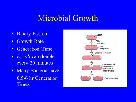 Microbial Growth Binary Fission Growth Rate Generation Time E. coli can double every 20 minutes Many Bacteria have 0.5-6 hr Generation Times.