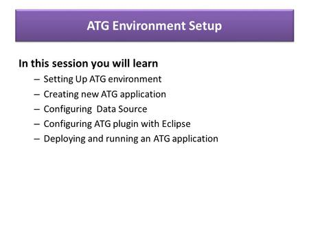 ATG Environment Setup In this session you will learn – Setting Up ATG environment – Creating new ATG application – Configuring Data Source – Configuring.
