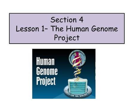Section 4 Lesson 1– The Human Genome Project. Applications of DNA Technology Advances in gene manipulation have made many things possible. This section.