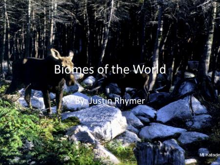 Biomes of the World By: Justin Rhymer Tundra Average Precipitation Temp. Range Plant Species Animal Species Location(s)Abiotic factors Special Features.