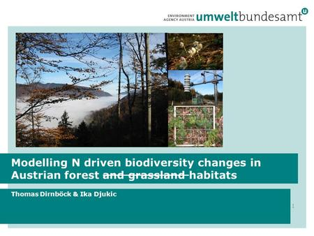 Modelling N driven biodiversity changes in Austrian forest and grassland habitats Thomas Dirnböck & Ika Djukic 1.