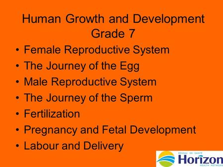 Human Growth and Development Grade 7 Female Reproductive System The Journey of the Egg Male Reproductive System The Journey of the Sperm Fertilization.