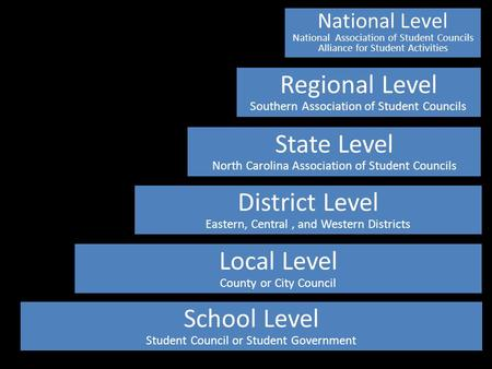 Local Level County or City Council School Level Student Council or Student Government District Level Eastern, Central, and Western Districts State Level.