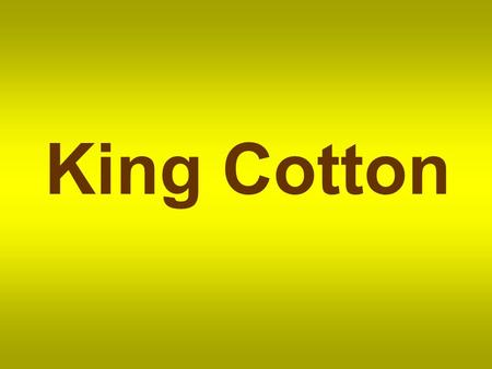 King Cotton. Cotton is a soft fibre that grows around the seeds of the cotton plant.