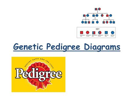 Genetic Pedigree Diagrams. What are genetic pedigree diagrams? Show how an inherited trait (characteristic) runs in a group of related individuals. You.