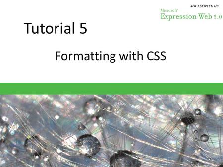 Tutorial 5 Formatting with CSS. Objectives Session 5.1 – Evaluate why CSS styles are used – Determine where to write styles – Create an element selector.
