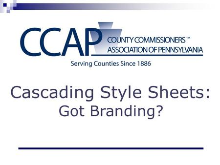 Cascading Style Sheets: Got Branding?. What is CSS? CSS = Cascading Style Sheets Styles define how HTML (web) elements are displayed. One (or more) style.