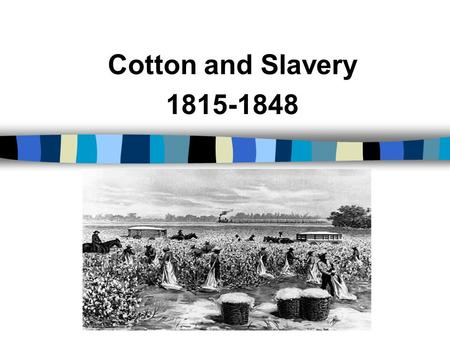 Cotton and Slavery 1815-1848. The Cotton Gin The invention of cotton gin in 1793 made short-staple cotton profitable. Thereafter, cotton and slavery began.