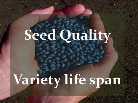 Seed Quality Variety life span. Value Shifts Continue No longer just a seed… Planting unit Technology Vigor Protection Fiber Quality Additional Traits.