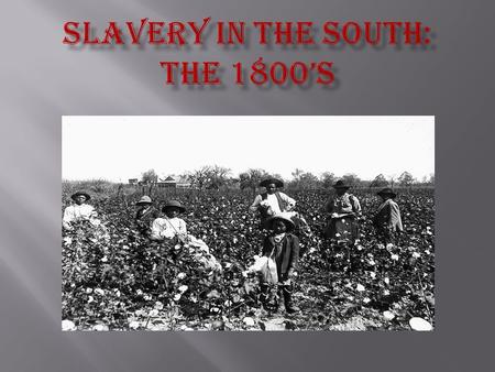 "The Southern half of the United States consisted mainly of ""Slave States"", which allowed slavery of African Americans. The states that allowed slavery."