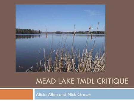 MEAD LAKE TMDL CRITIQUE Alicia Allen and Nick Grewe.
