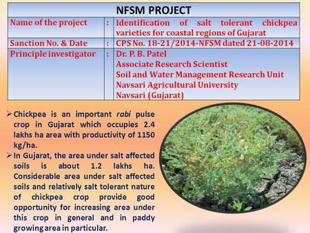 NFSM PROJECT Name of the project:Identification of salt tolerant chickpea varieties for coastal regions of Gujarat Sanction No. & Date:CPS No. 18-21/2014-NFSM.