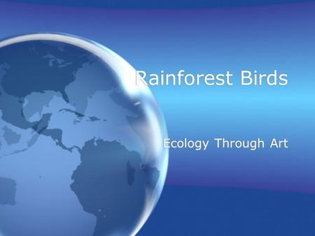 Rainforest Birds Ecology Through Art. Rainforest Birds There are hundreds of different types of birds in the rain forest. Parrots, Macaws, Hornbills and.