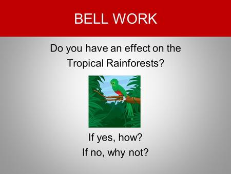 BELL WORK Do you have an effect on the Tropical Rainforests? If yes, how? If no, why not?