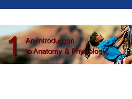 An Introduction to Anatomy & Physiology An Introduction to Anatomy & Physiology 1 1.