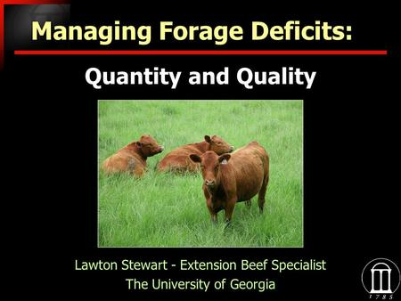 Quantity and Quality Lawton Stewart - Extension Beef Specialist The University of Georgia Lawton Stewart - Extension Beef Specialist The University of.
