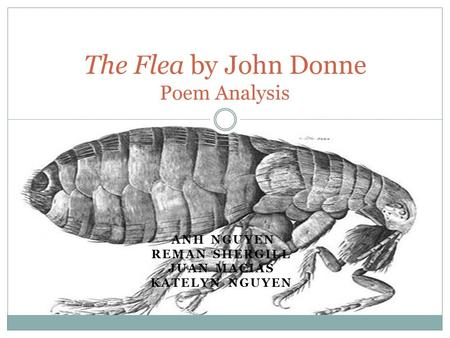 The Flea by John Donne Poem Analysis