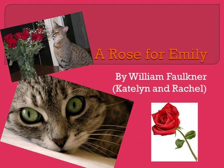 Rose For Emily Essay