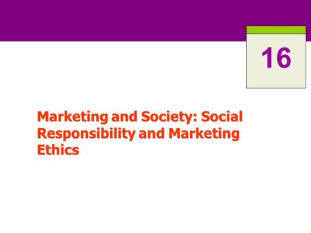 Marketing and Society: Social Responsibility and Marketing Ethics 16.