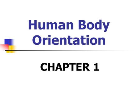 Human Body Orientation CHAPTER 1. Anatomy & Physiology Structure serves function Examples: Bone Lung Multi-tasking systems.
