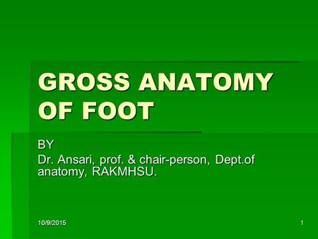 1 GROSS ANATOMY OF FOOT BY Dr. Ansari, prof. & chair-person, Dept.of anatomy, RAKMHSU. 10/9/2015.