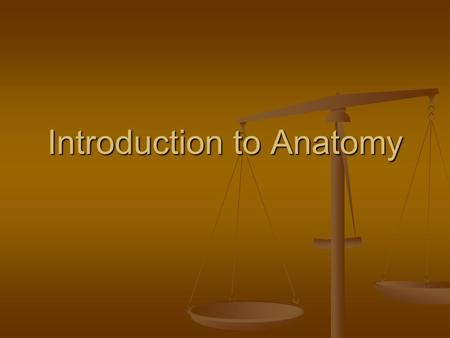 Introduction to Anatomy. Understanding Anatomy It's the foundation of many health care professions It's the foundation of many health care professions.