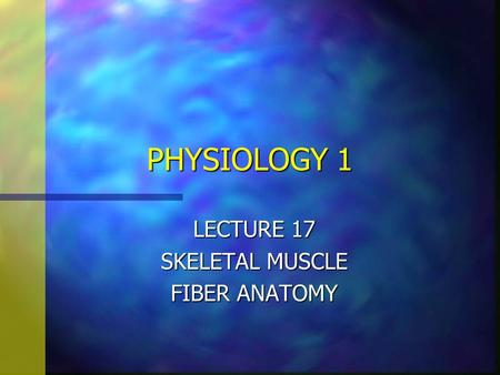 PHYSIOLOGY 1 LECTURE 17 SKELETAL MUSCLE FIBER ANATOMY.