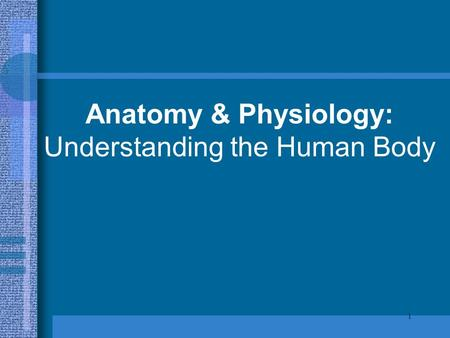 1 Anatomy & Physiology: Understanding the Human Body.