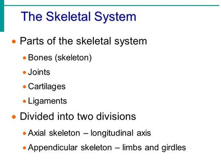 The Skeletal System  Parts of the skeletal system  Bones (skeleton)  Joints  Cartilages  Ligaments  Divided into two divisions  Axial skeleton –