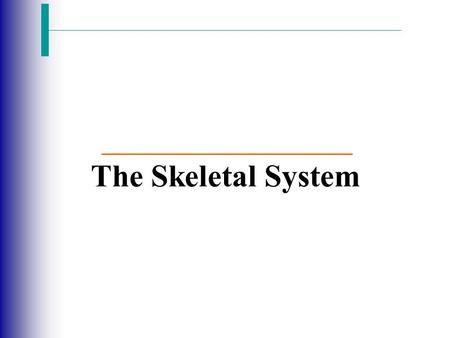 The Skeletal System. Slide 5.1 Copyright © 2003 Pearson Education, Inc. publishing as Benjamin Cummings  Parts of the skeletal system  Bones (skeleton)