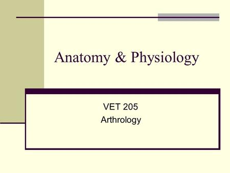 Anatomy & Physiology VET 205 Arthrology. Joint Terminology Syndesmology=arthrology This is the study of the articulations (unions) between bones Synarthrosis.