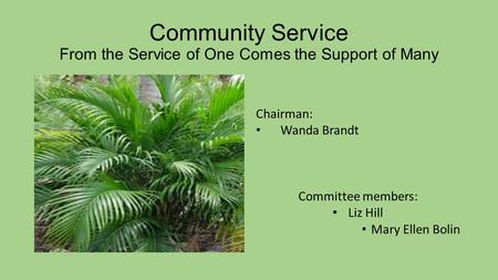 Community Service From the Service of One Comes the Support of Many Chairman: Wanda Brandt Committee members: Liz Hill Mary Ellen Bolin.