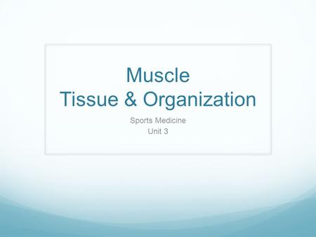 Muscle Tissue & Organization Sports Medicine Unit 3.