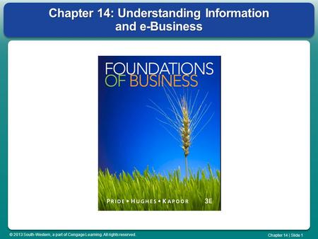 © 2013 South-Western, a part of Cengage Learning. All rights reserved. Chapter 14 | Slide 1 Chapter 14: Understanding Information and e-Business.