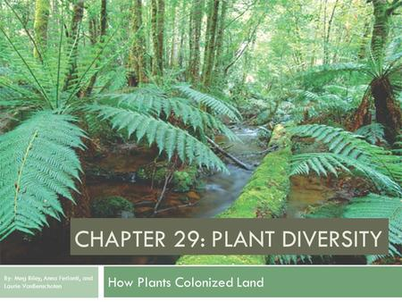 CHAPTER 29: PLANT DIVERSITY How Plants Colonized Land By: Meg Riley, Anna Ferlanti, and Laurie VanBenschoten.