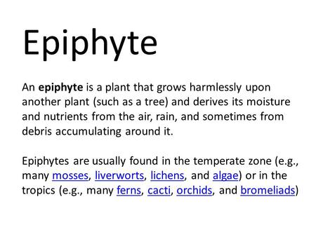 Epiphyte An epiphyte is a plant that grows harmlessly upon another plant (such as a tree) and derives its moisture and nutrients from the air, rain, and.