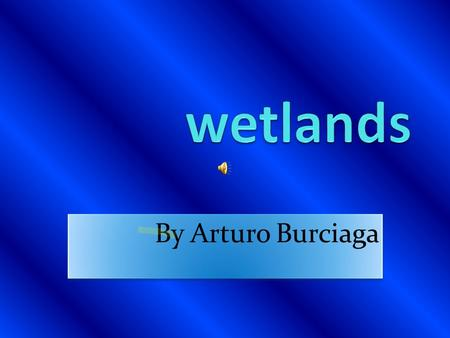 By Arturo Burciaga Map of wetlands The wetlands is in many places.