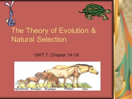 The Theory of Evolution & Natural Selection UNIT 7: Chapter 14-18.