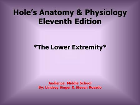 Hole's Anatomy & Physiology Eleventh Edition *The Lower Extremity* Audience: Middle School By: Lindsey Singer & Steven Rosado.