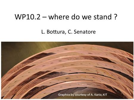 WP10.2 – where do we stand ? L. Bottura, C. Senatore Graphics by courtesy of A. Kario, KIT.