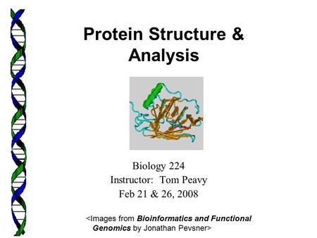Biology 224 Instructor: Tom Peavy Feb 21 & 26, 2008 <Images from Bioinformatics and Functional Genomics by Jonathan Pevsner> Protein Structure & Analysis.