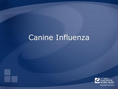 Canine Influenza. Overview Organism History Epidemiology Transmission Disease in Humans Disease in Animals Prevention and Control Center for Food Security.