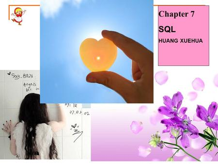 Chapter 7 SQL HUANG XUEHUA. SQL SQL server2005 introduction Install components  management studio.