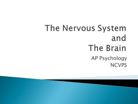 AP Psychology NCVPS. AP Psychology NCVPS The electrochemical communication system of the body Two way communications: from the brain to the body for.