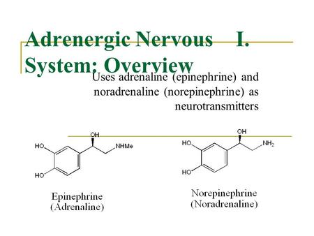 I.Adrenergic Nervous System: Overview Uses adrenaline (epinephrine) and noradrenaline (norepinephrine) as neurotransmitters.